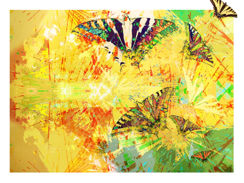 butterfly effect II