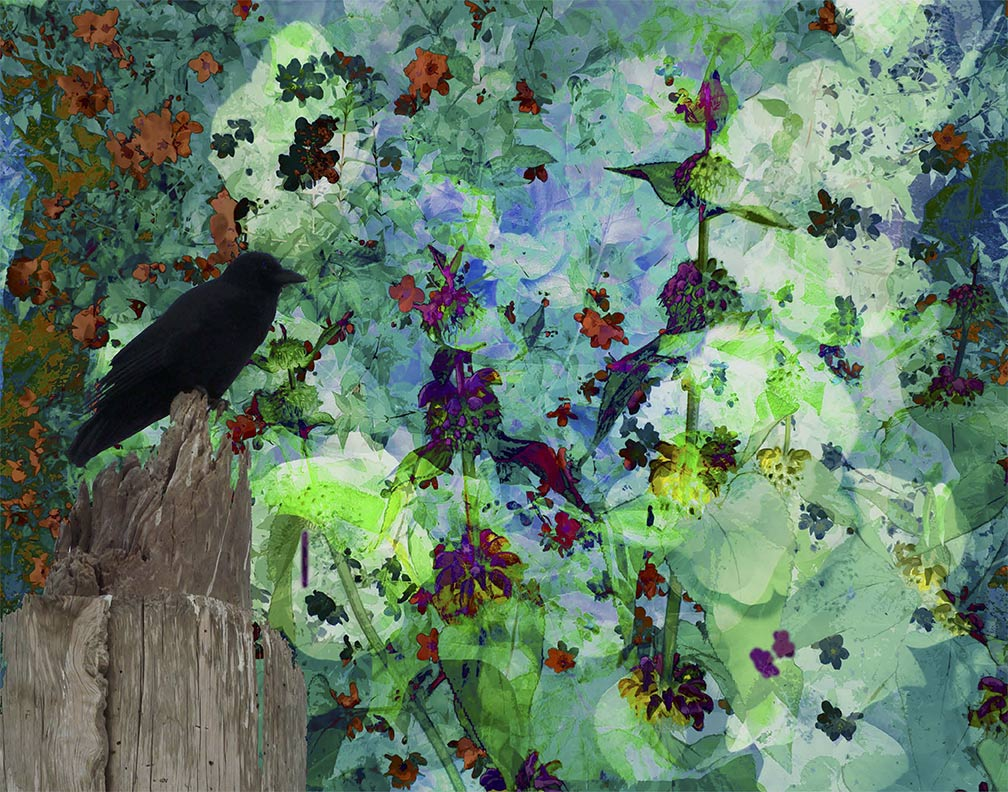 A Crow's Picnic painting by Susan Harman